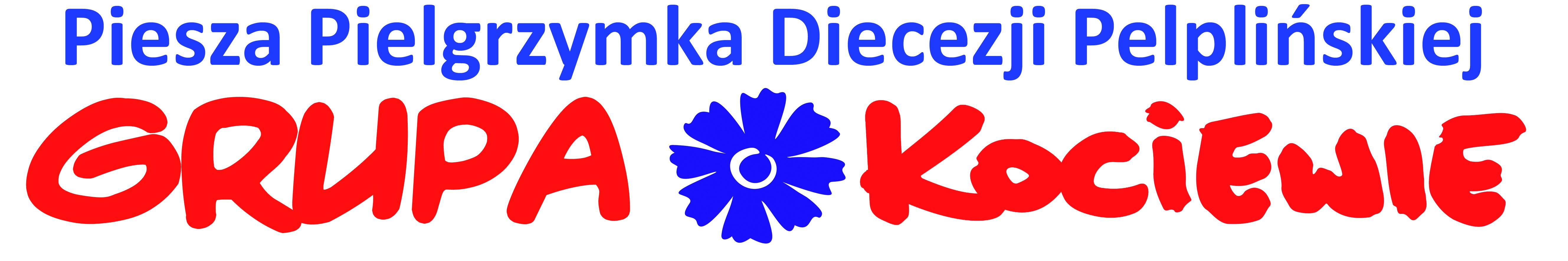 Pielgrzymka Diecezji Pelplińskiej logo