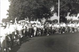 Kociewie 1984